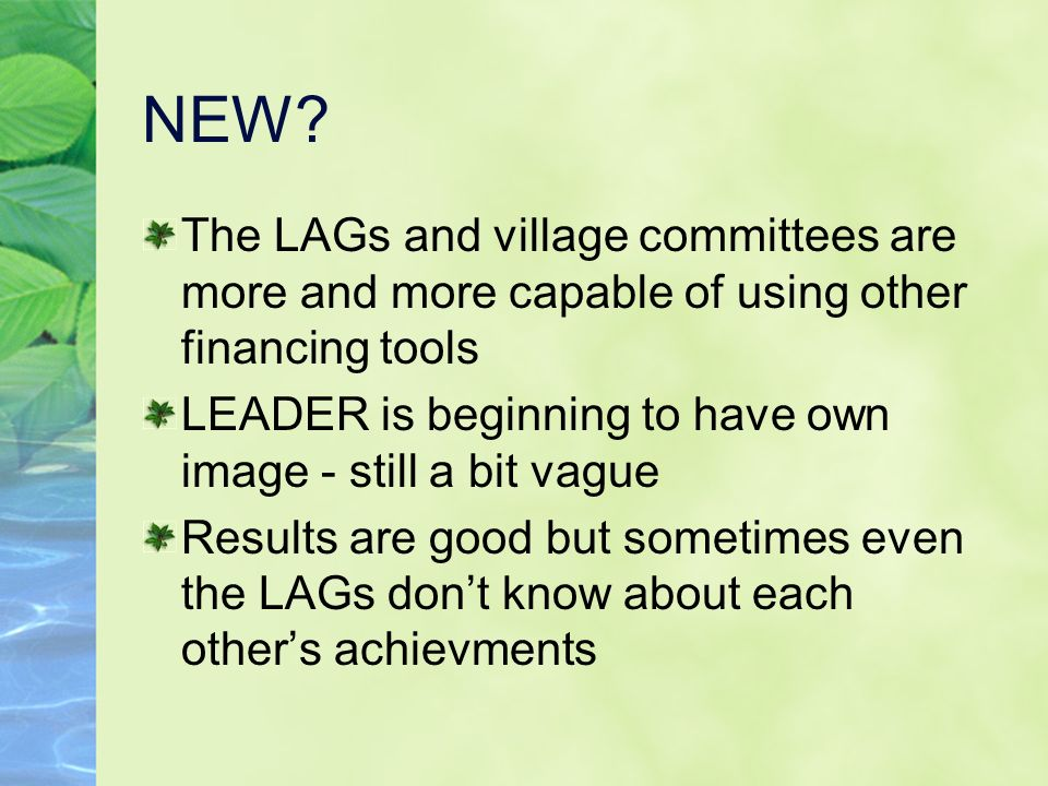 NEW? The LAGs and village committees are more and more capable of using other financing tools LEADER is beginning to have own image - still a bit vagu