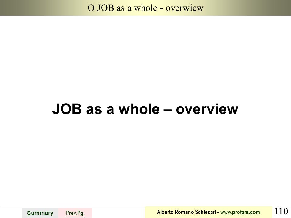 110 Summary Prev.Pg. Alberto Romano Schiesari – www.profars.comwww.profars.com O JOB as a whole - overwiew JOB as a whole – overview