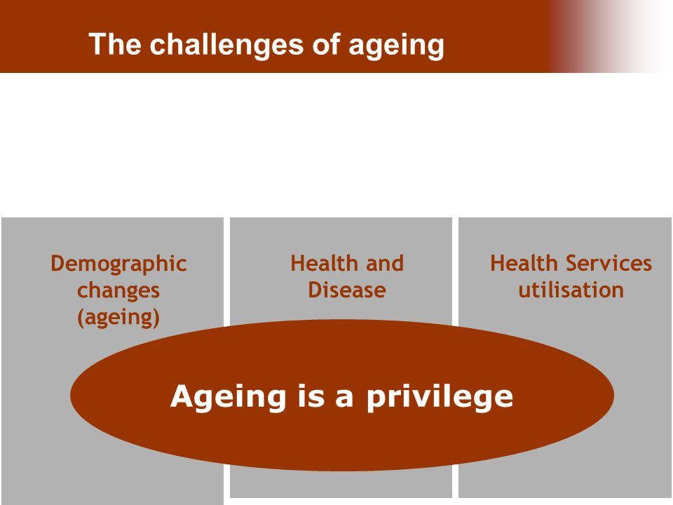 26.Nov.10 | Paula Santana Health and Disease Health Services utilisation Demographic changes (ageing) Ageing is a privilege The challenges of ageing
