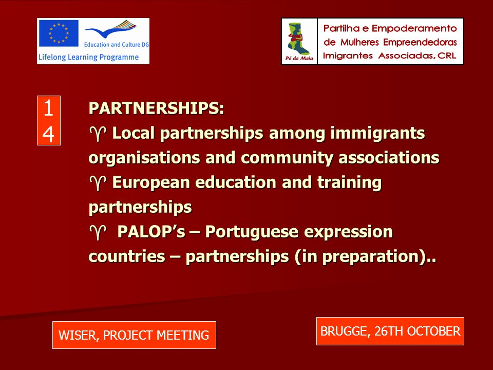 PARTNERSHIPS: Local partnerships among immigrants organisations and community associations European education and training partnerships PALOPs – Portuguese expression countries – partnerships (in preparation)..