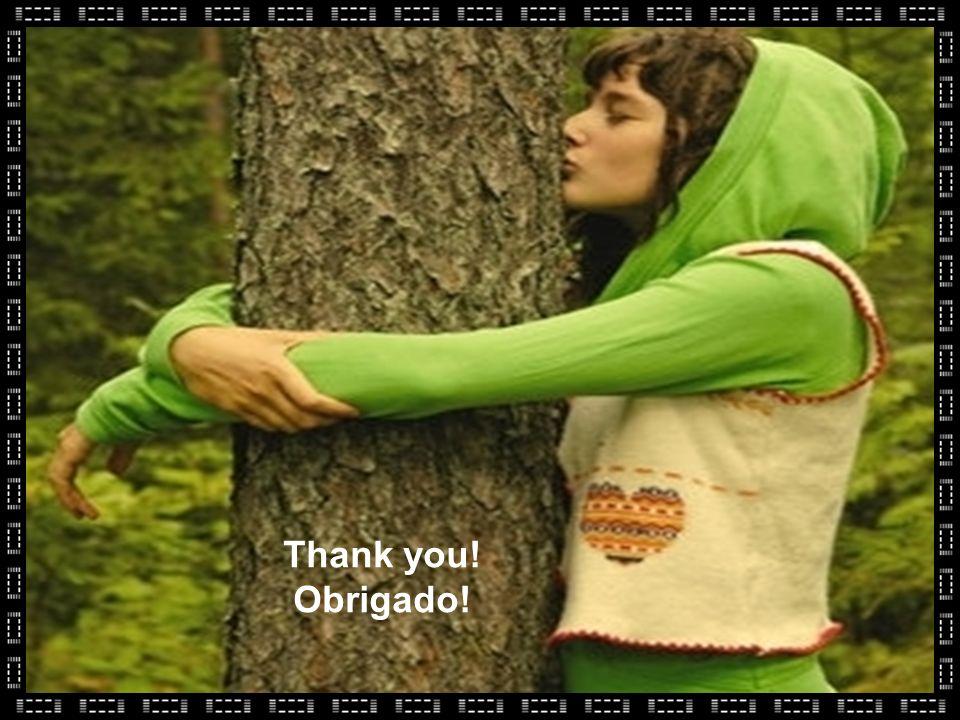 Thank you! Obrigado!