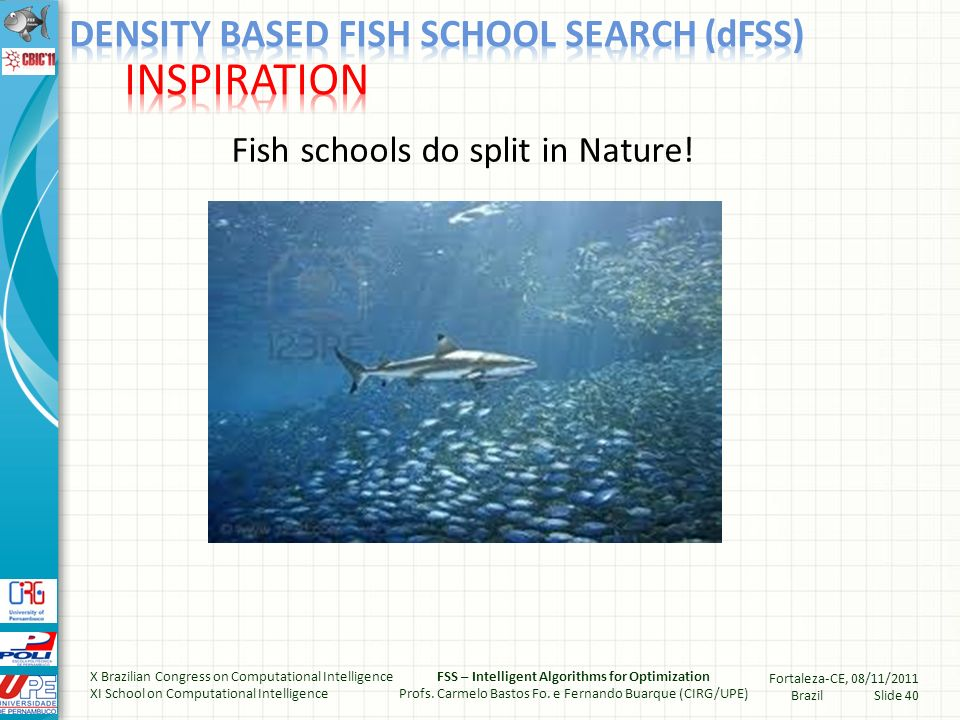 Fish schools do split in Nature.