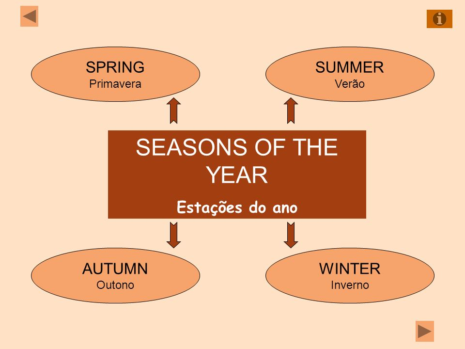 SEASONS OF THE YEAR Estações do ano SPRING Primavera SUMMER Verão WINTER Inverno AUTUMN Outono