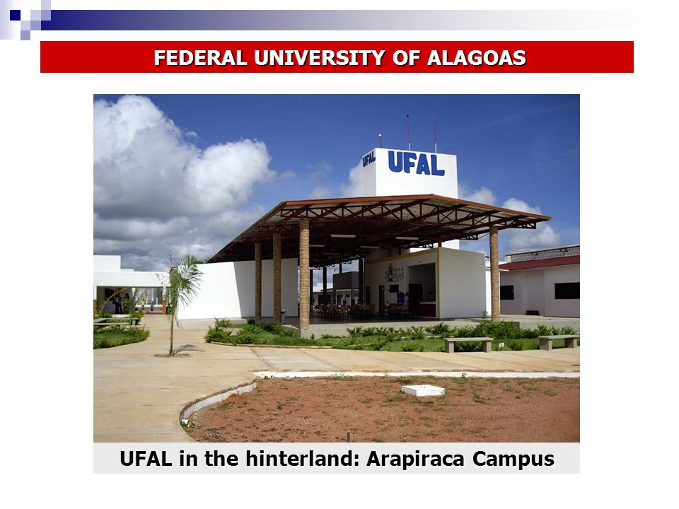 UFAL in the hinterland: Arapiraca Campus FEDERAL UNIVERSITY OF ALAGOAS FEDERAL UNIVERSITY OF ALAGOAS