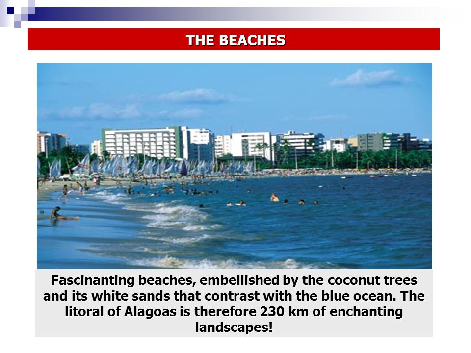 THE BEACHES THE BEACHES Fascinanting beaches, embellished by the coconut trees and its white sands that contrast with the blue ocean. The litoral of A