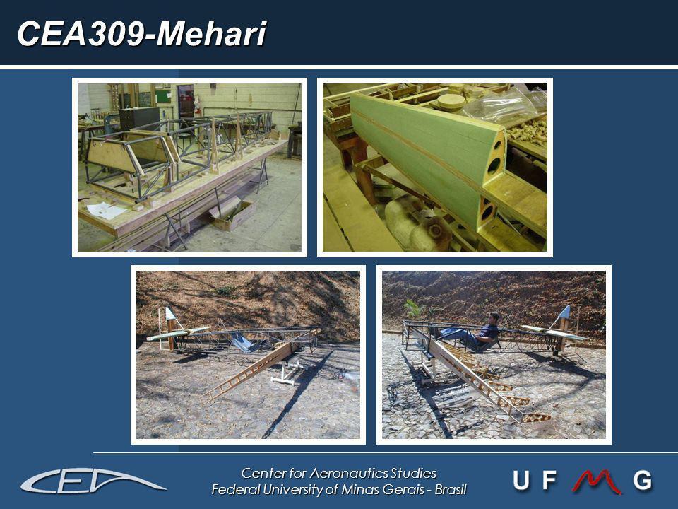 Center for Aeronautics Studies Federal University of Minas Gerais - Brasil CEA309-Mehari
