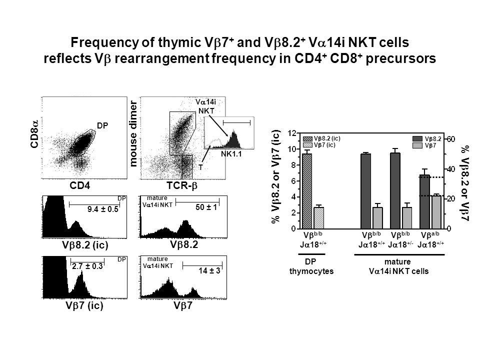 T V 14i NKT TCR- mouse dimer V 8.2 mature V 14i NKT 50 ± 1 V 7 14 ± 3 mature V 14i NKT DP CD4 CD8 V 8.2 (ic) 9.4 ± 0.5 DP 2.7 ± 0.3 DP NK1.1 % V 8.2 o