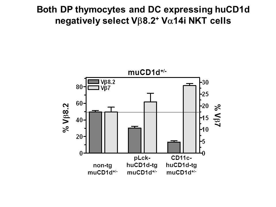 muCD1d +/- non-tg muCD1d +/- pLck- huCD1d-tg muCD1d +/- CD11c- huCD1d-tg muCD1d +/- % V 8.2 % V 7 Both DP thymocytes and DC expressing huCD1d negative