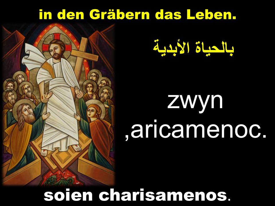 بالحياة الأبدية zwyn,aricamenoc. in den Gräbern das Leben. soien charisamenos.