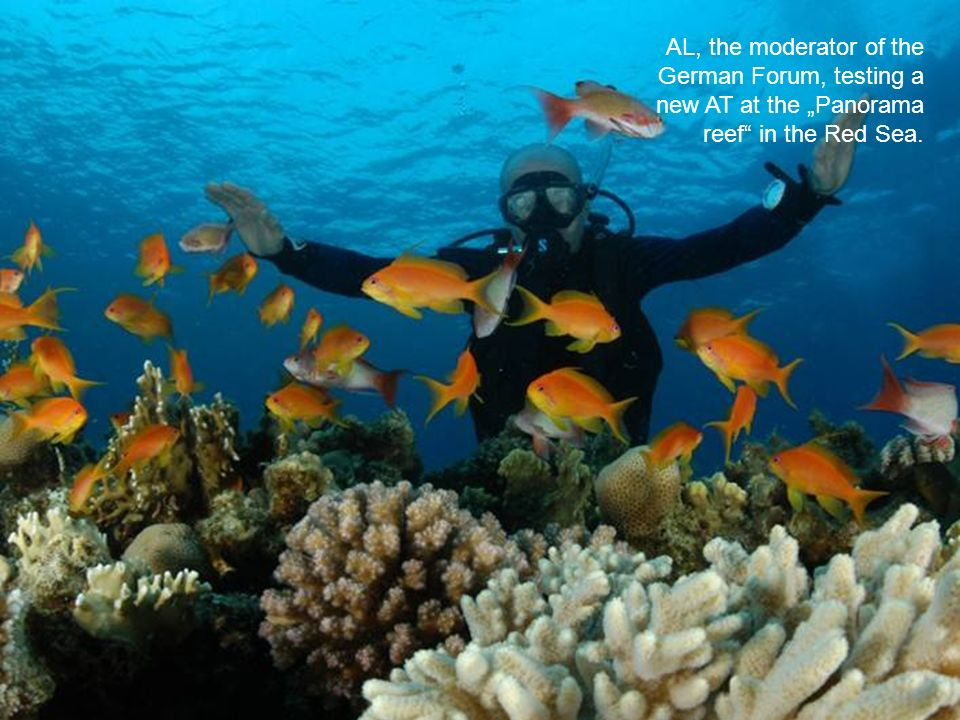 AL, the moderator of the German Forum, testing a new AT at the Panorama reef in the Red Sea.