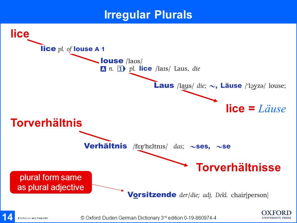 Irregular Plurals 14 © Oxford Duden German Dictionary 3 rd edition 0-19-860974-4 © Oxford University Press 2005 Torverhältnis Torverhältnisse plural form same as plural adjective lice lice = Läuse