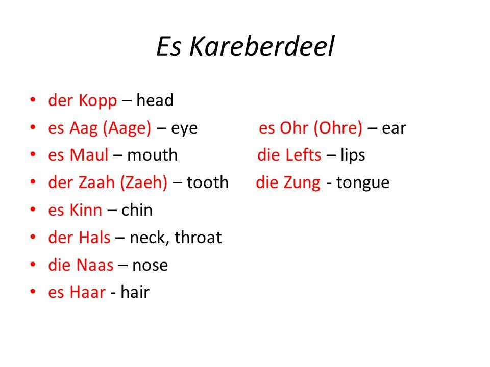 Es Kareberdeel der Kopp – head es Aag (Aage) – eye es Ohr (Ohre) – ear es Maul – mouth die Lefts – lips der Zaah (Zaeh) – tooth die Zung - tongue es Kinn – chin der Hals – neck, throat die Naas – nose es Haar - hair