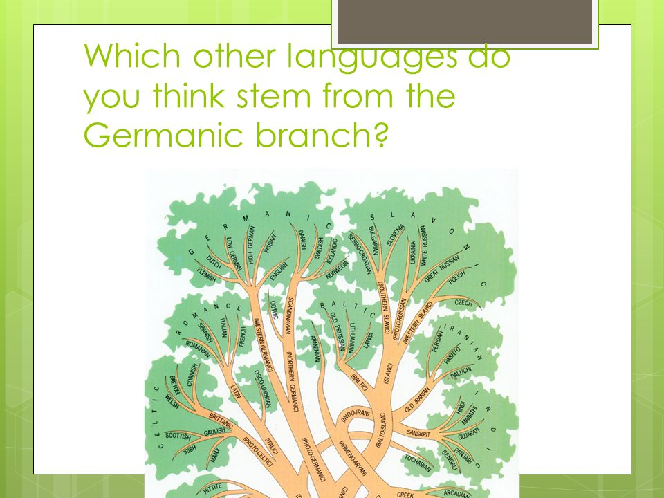 Which other languages do you think stem from the Germanic branch?