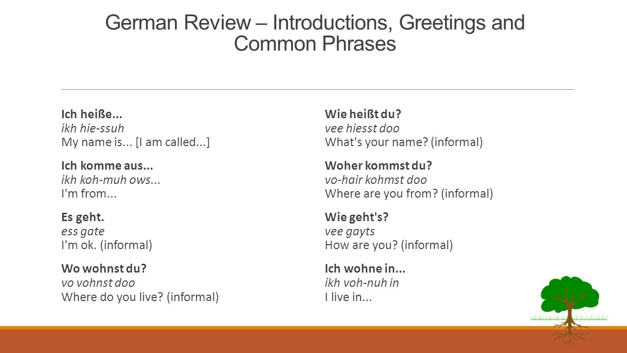 German Vocabulary – Greetings and Introductions -- Review Ja Yes Nein No Heißen verb meaning to be called or am Wie gehts? How are you? Wie geht es di