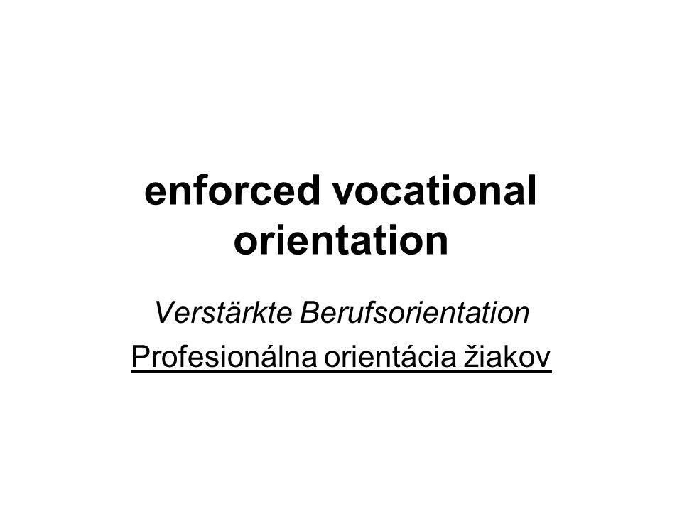 enforced vocational orientation Verstärkte Berufsorientation Profesionálna orientácia žiakov