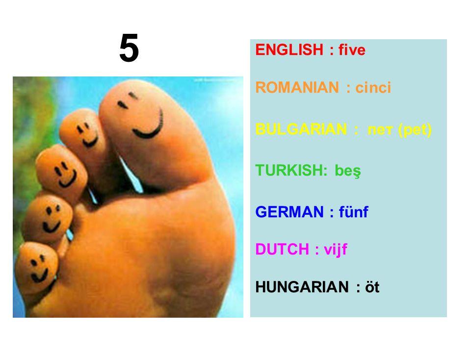 ENGLISH : five ROMANIAN : cinci BULGARIAN : пет (pet) TURKISH: beş GERMAN : fünf DUTCH : vijf HUNGARIAN : öt 5
