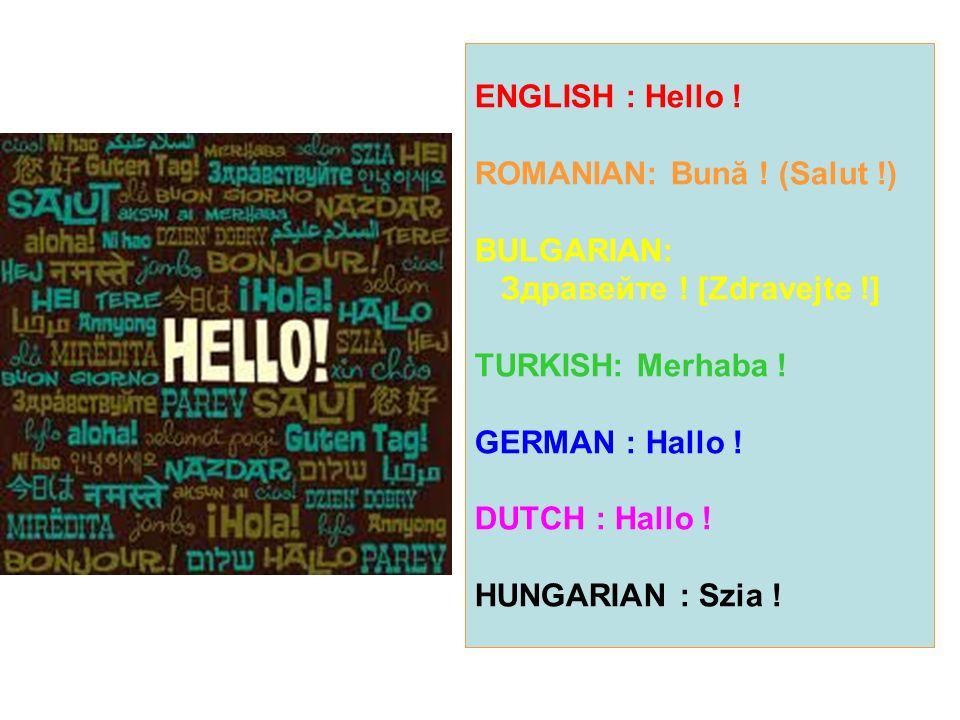 ENGLISH : Hello ! ROMANIAN: Bună ! (Salut !) BULGARIAN: Здравейте ! [Zdravejte !] TURKISH: Merhaba ! GERMAN : Hallo ! DUTCH : Hallo ! HUNGARIAN : Szia