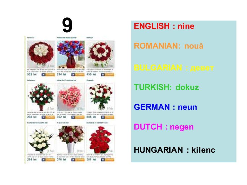 ENGLISH : nine ROMANIAN: nouă BULGARIAN : девет TURKISH: dokuz GERMAN : neun DUTCH : negen HUNGARIAN : kilenc 9