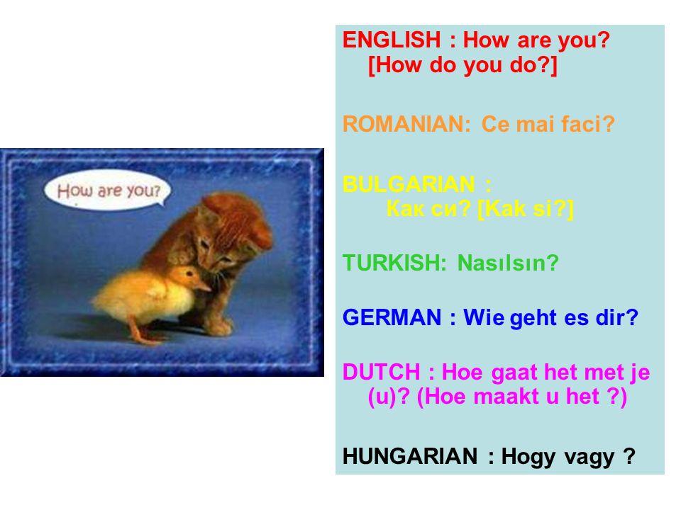 ENGLISH : How are you? [How do you do?] ROMANIAN: Ce mai faci? BULGARIAN : Как си? [Kak si?] TURKISH: Nasılsın? GERMAN : Wie geht es dir? DUTCH : Hoe