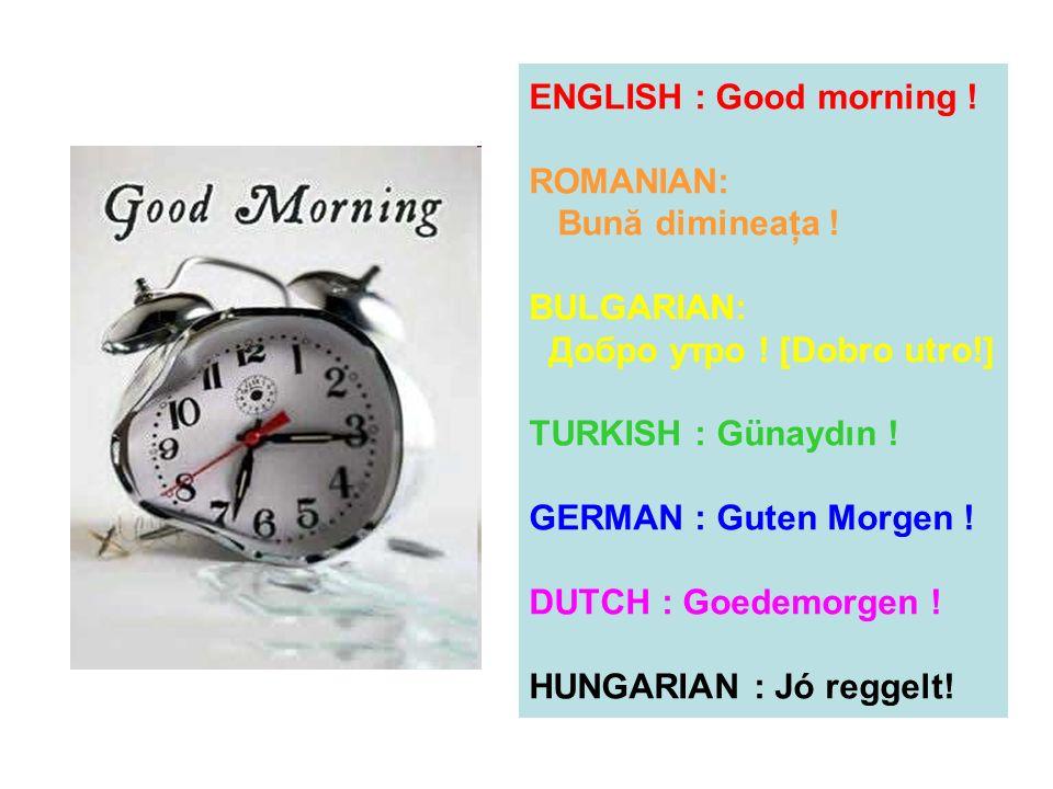 ENGLISH : Good morning ! ROMANIAN: Bună dimineaţa ! BULGARIAN: Добро утро ! [Dobro utro!] TURKISH : Günaydın ! GERMAN : Guten Morgen ! DUTCH : Goedemo