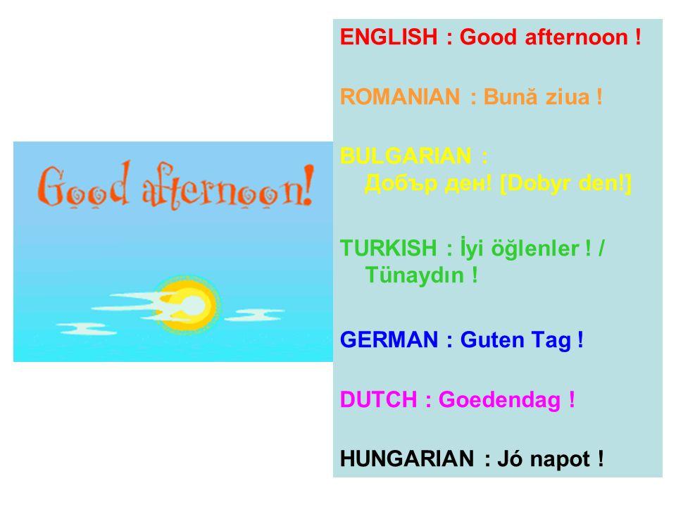 ENGLISH : Good afternoon ! ROMANIAN : Bună ziua ! BULGARIAN : Добър ден! [Dobyr den!] TURKISH : İyi öğlenler ! / Tünaydın ! GERMAN : Guten Tag ! DUTCH