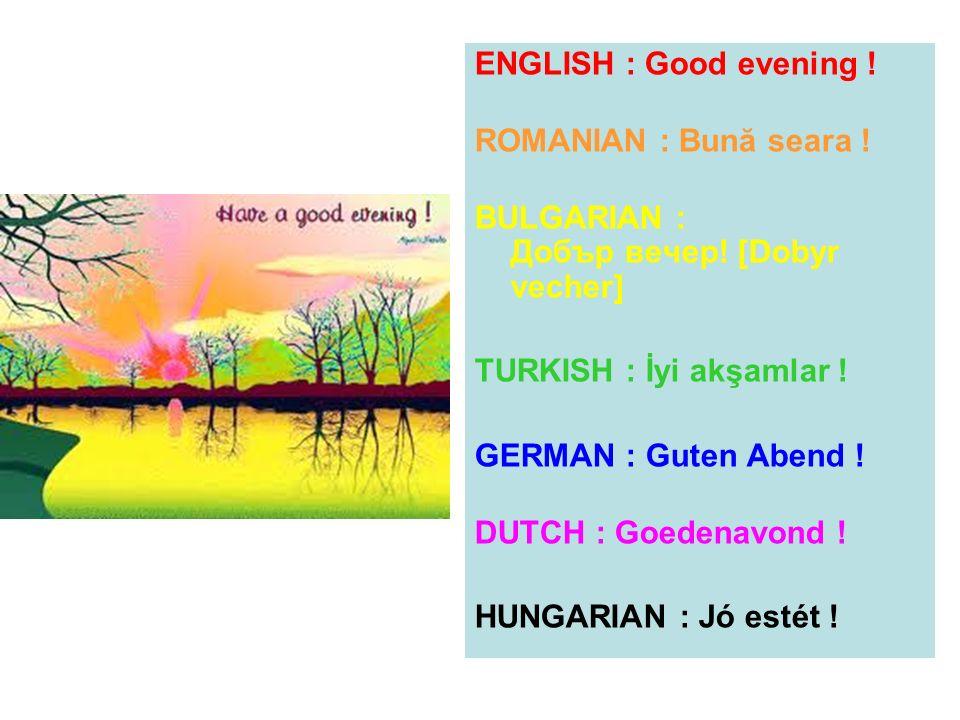 ENGLISH : Good evening ! ROMANIAN : Bună seara ! BULGARIAN : Добър вечер! [Dobyr vecher] TURKISH : İyi akşamlar ! GERMAN : Guten Abend ! DUTCH : Goede
