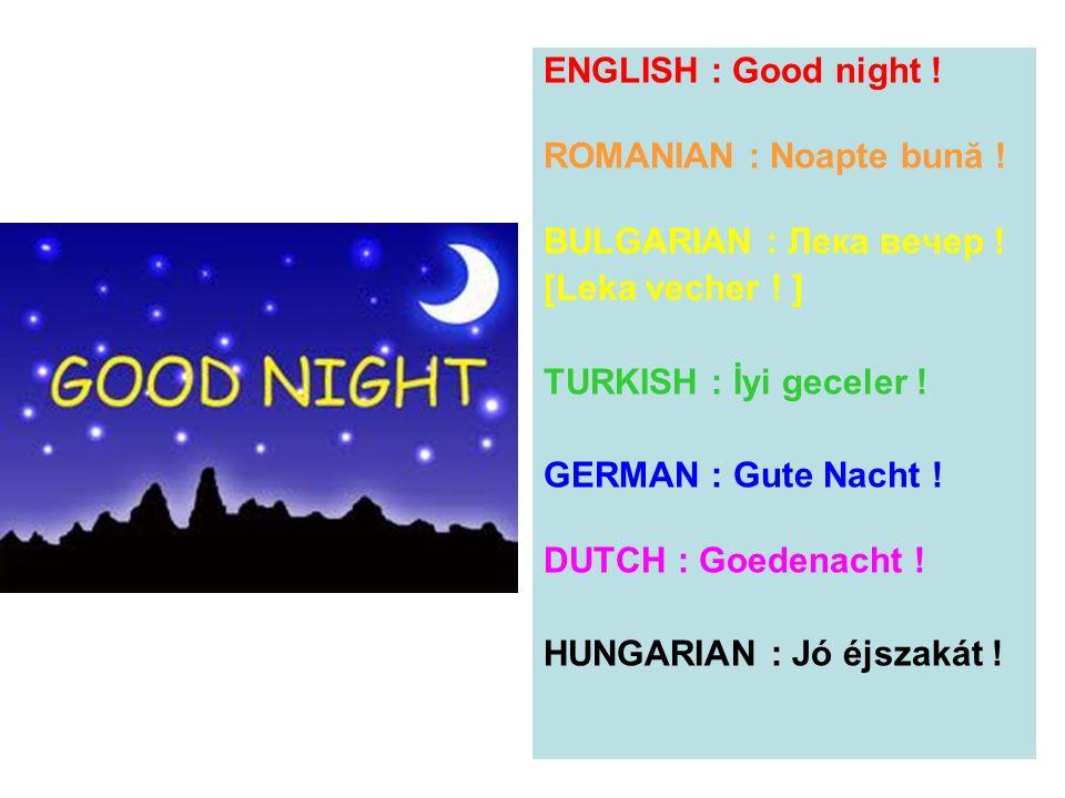 ENGLISH : Good night ! ROMANIAN : Noapte bună ! BULGARIAN : Лека вечер ! [Leka vecher ! ] TURKISH : İyi geceler ! GERMAN : Gute Nacht ! DUTCH : Goeden