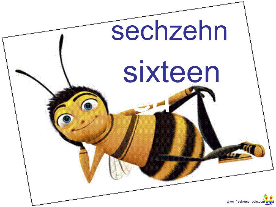 www.fresherschools.com Ben sechzehn sixteen