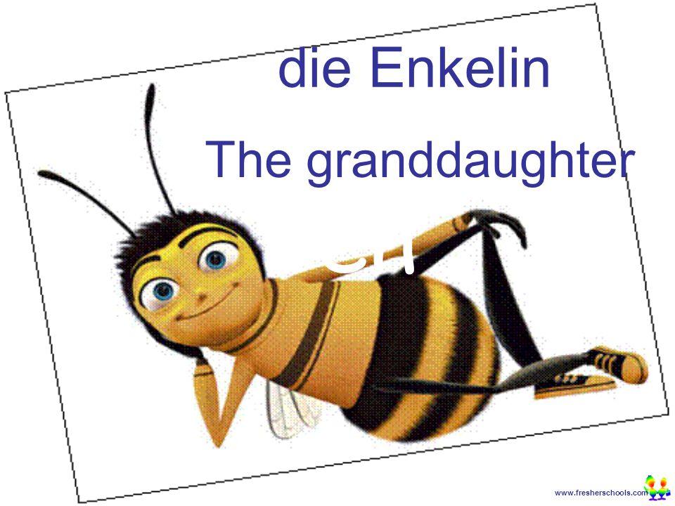 www.fresherschools.com Ben die Enkelin The granddaughter