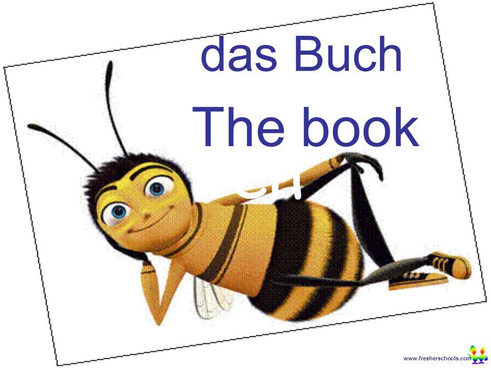 www.fresherschools.com Ben das Buch The book