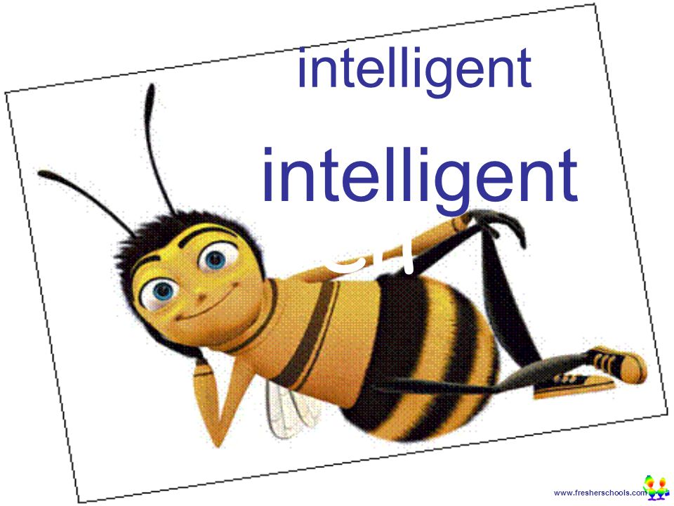 www.fresherschools.com Ben intelligent