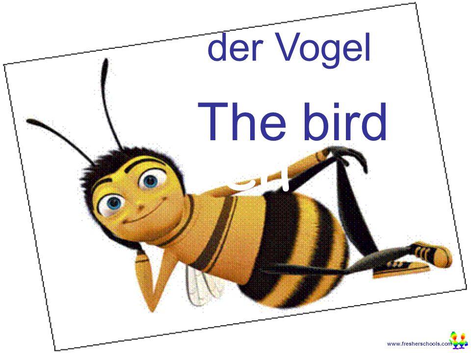 www.fresherschools.com Ben der Vogel The bird