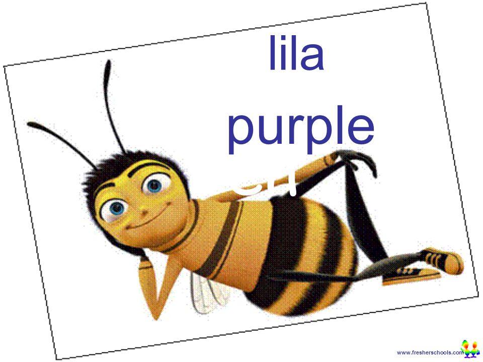 www.fresherschools.com Ben lila purple