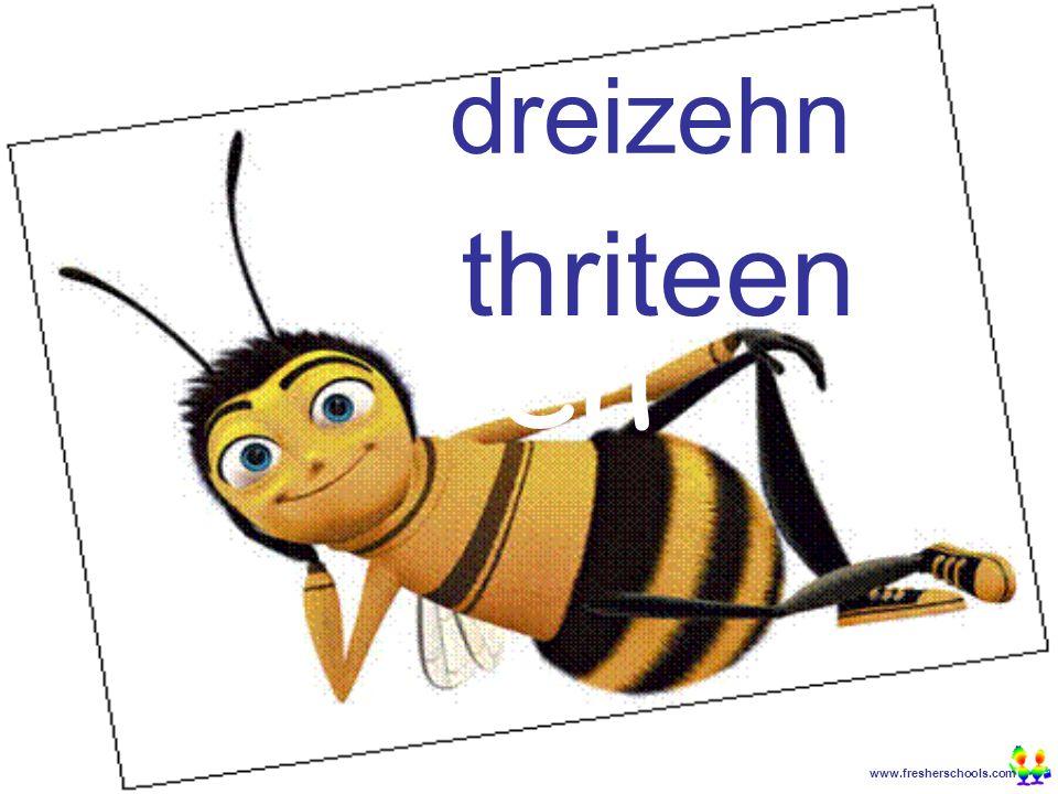 www.fresherschools.com Ben dreizehn thriteen