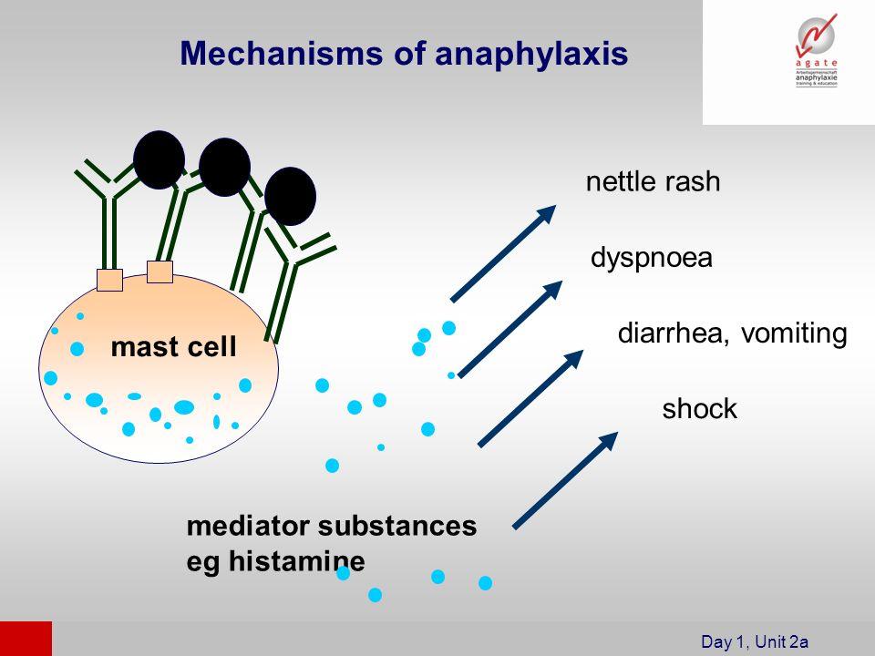 mast cell mediator substances eg histamine nettle rash dyspnoea diarrhea, vomiting shock Day 1, Unit 2a Mechanisms of anaphylaxis
