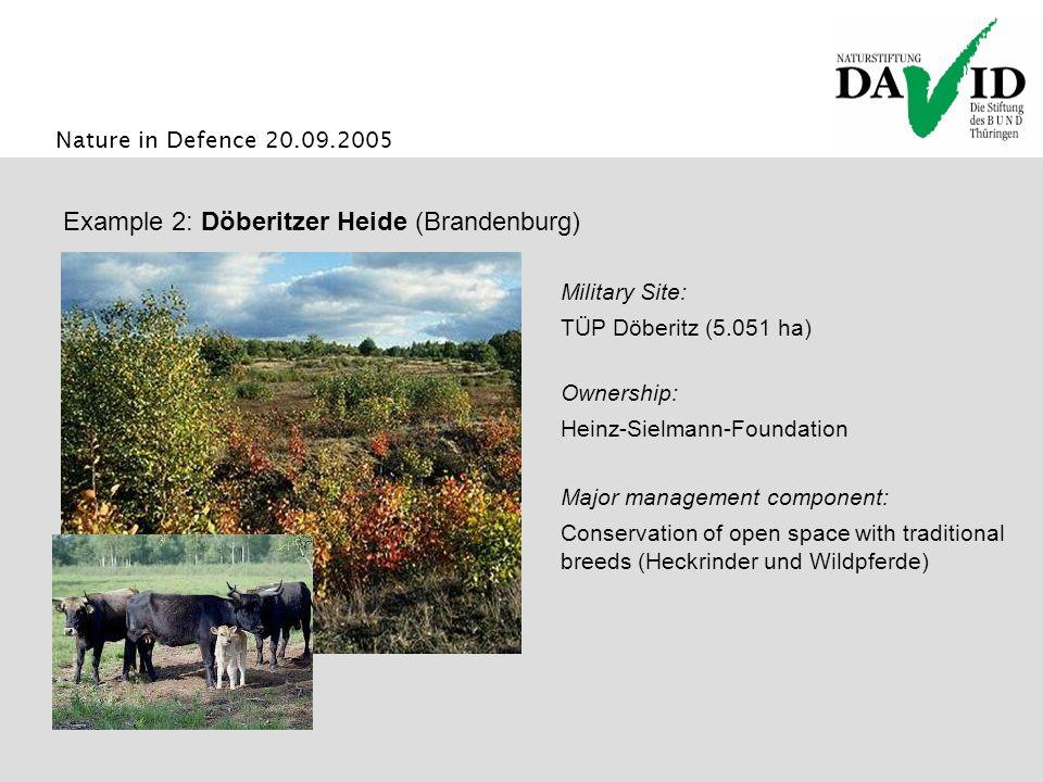 Nature in Defence 20.09.2005 Major management component: Conservation of open space with traditional breeds (Heckrinder und Wildpferde) Example 2: Döberitzer Heide (Brandenburg) Ownership: Heinz-Sielmann-Foundation Military Site: TÜP Döberitz (5.051 ha)