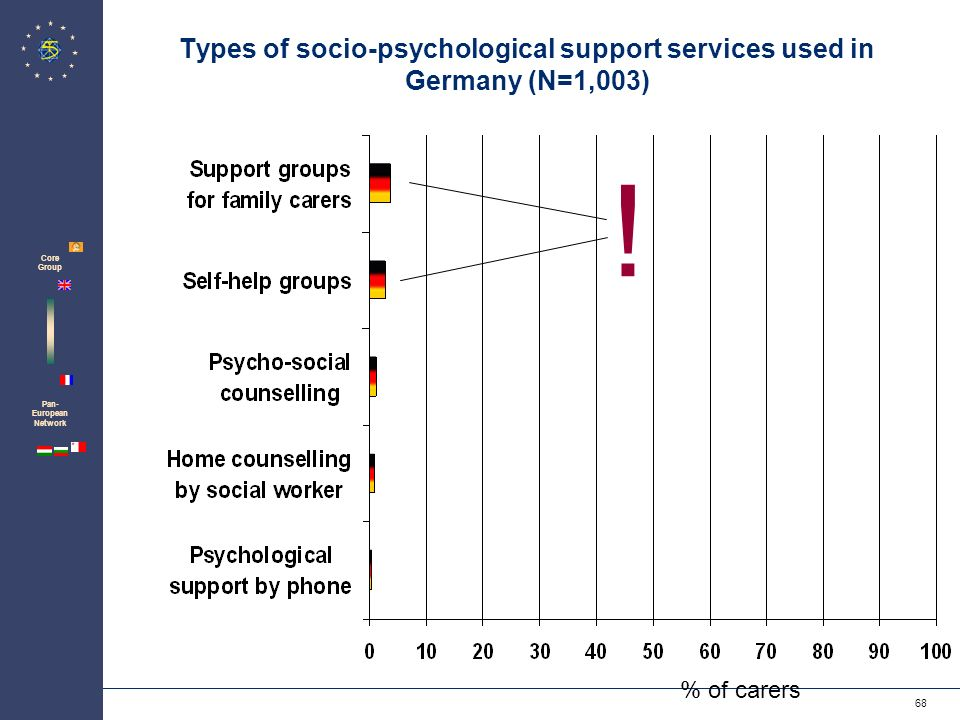 Zentrum für Psychosoziale Medizin Institut für Medizin-Soziologie 68 Pan- European Network Core Group Types of socio-psychological support services used in Germany (N=1,003) % of carers !