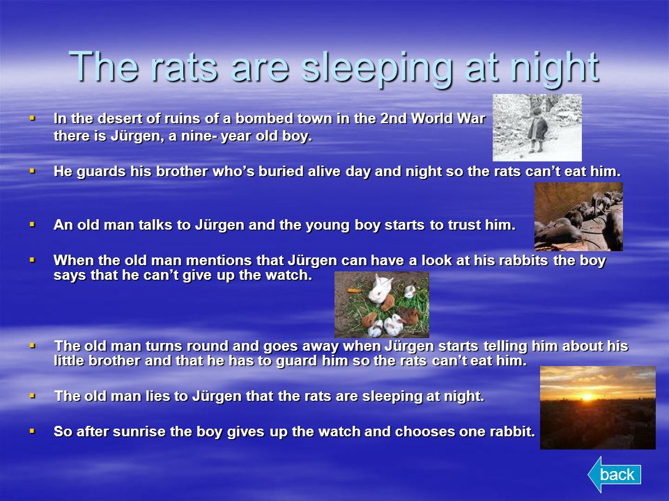 The rats are sleeping at night In the desert of ruins of a bombed town in the 2nd World War In the desert of ruins of a bombed town in the 2nd World War there is Jürgen, a nine- year old boy.
