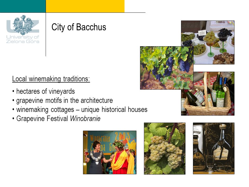 City of Bacchus Local winemaking traditions: hectares of vineyards grapevine motifs in the architecture winemaking cottages – unique historical houses Grapevine Festival Winobranie