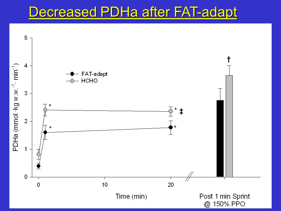Decreased PDHa after FAT-adapt