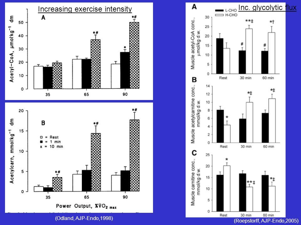 (Odland, AJP-Endo,1998) (Roepstorff, AJP-Endo,2005) Increasing exercise intensity Inc. glycolytic flux