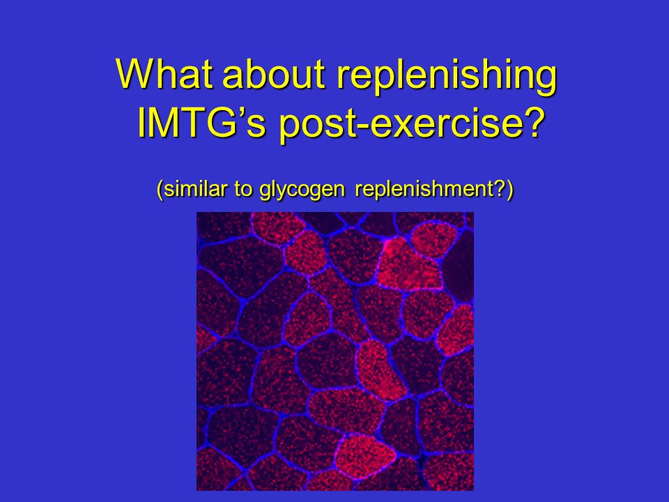 What about replenishing IMTGs post-exercise? (similar to glycogen replenishment?)