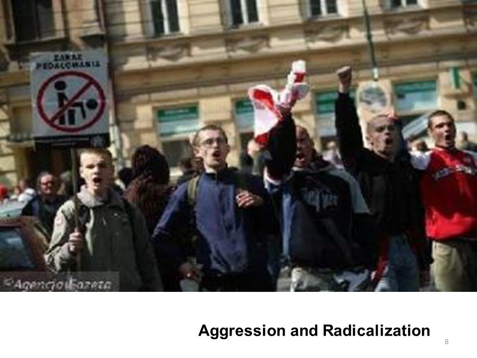 Aggression and Radicalization 8