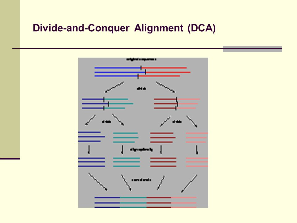 Divide-and-Conquer Alignment (DCA)