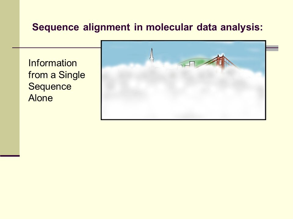 Information from a Single Sequence Alone Sequence alignment in molecular data analysis: