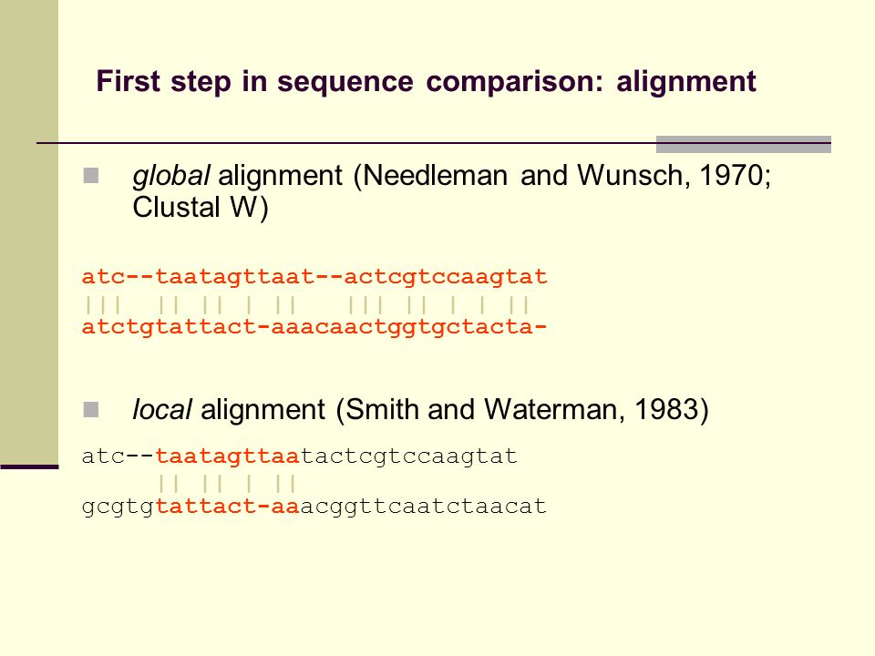 First step in sequence comparison: alignment global alignment (Needleman and Wunsch, 1970; Clustal W) atc--taatagttaat--actcgtccaagtat ||| || || | ||