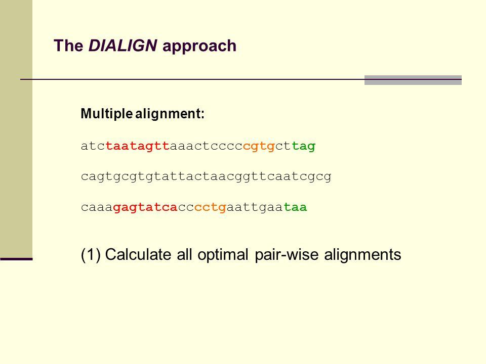 The DIALIGN approach Multiple alignment: atctaatagttaaactcccccgtgcttag cagtgcgtgtattactaacggttcaatcgcg caaagagtatcacccctgaattgaataa (1) Calculate all optimal pair-wise alignments