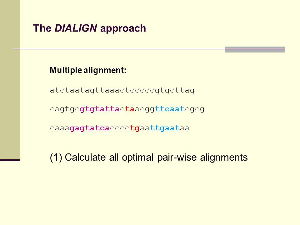 The DIALIGN approach Multiple alignment: atctaatagttaaactcccccgtgcttag cagtgcgtgtattactaacggttcaatcgcg caaagagtatcacccctgaattgaataa (1) Calculate all