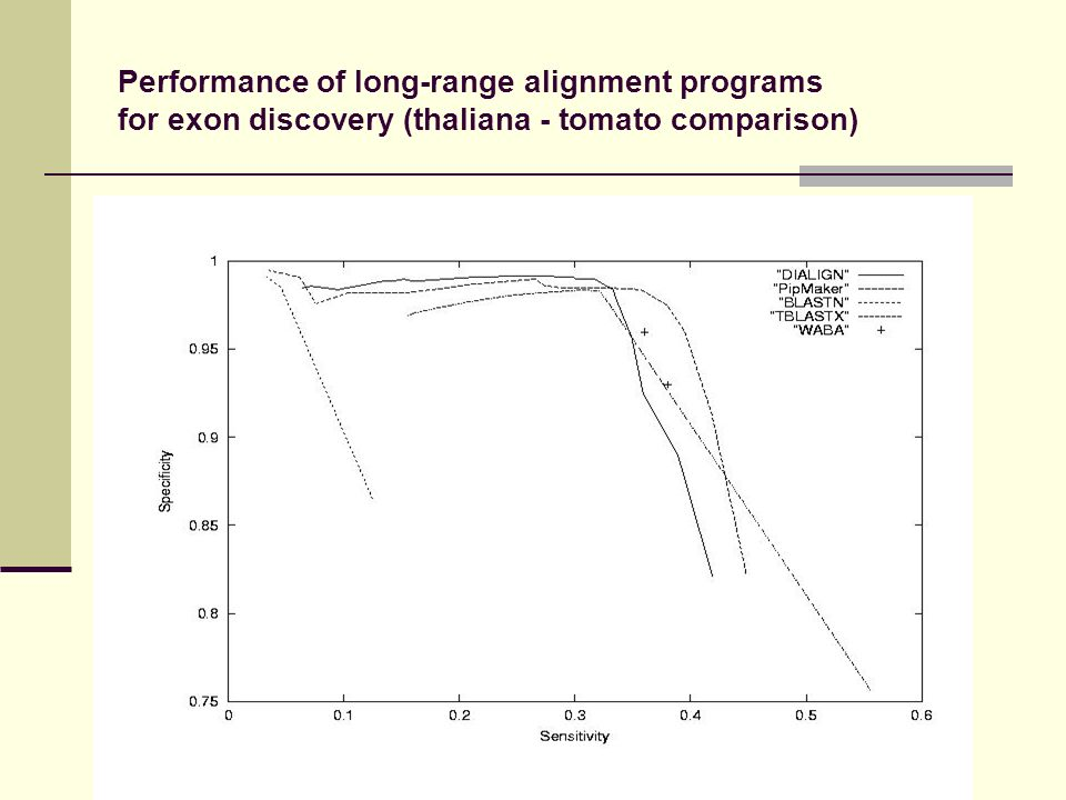 Performance of long-range alignment programs for exon discovery (thaliana - tomato comparison)