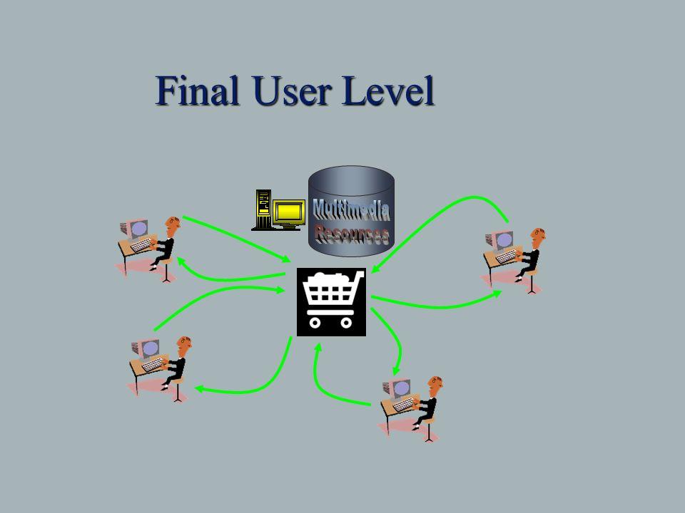 Final User Level